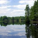 Lake Prestwood – Hartsville SC, Darlington County
