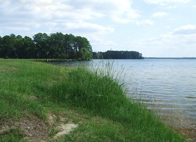 Lake HB Robinson - Chesterfield County / Darlington County