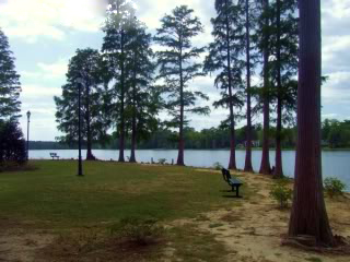 Lake Prestwood - Hartsville SC, Darlington County