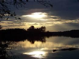 Lake Warren - Lake Warren State Park - Hampton County