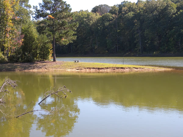 Lake russell us army corps of engineers for Lake greenwood sc fishing report