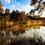 Santee Cooper Lakes – Marion and Moultrie