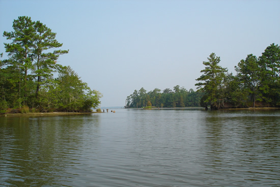 Santee Cooper Lakes - Marion and Moultrie
