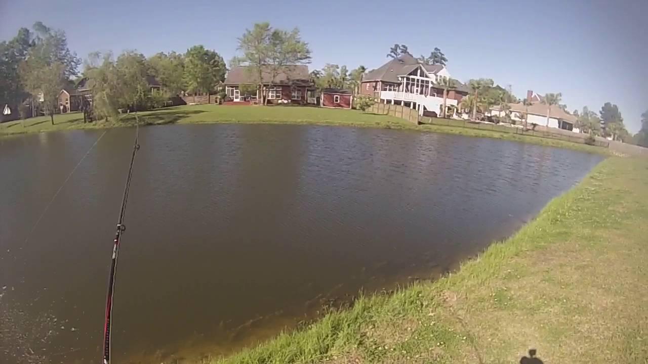 Goose Creek Lake